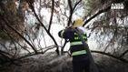 Castelfusano in fiamme, Raggi: disastro ambientale