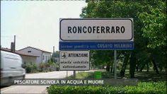 TG CRONACA