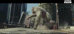 'The Rock' contro la Furia Animale