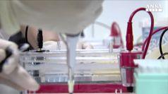 Neo artificiale diventa spia dei tumori
