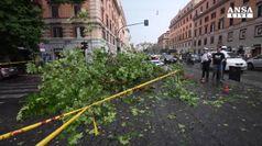 Cade grosso ramo in strada in centro a Roma