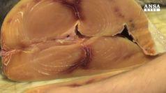 Crolla mito degli integratori, ultima vittima omega 3