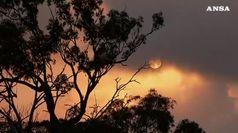 Australia, ancora incendi nel Queensland