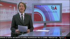 TG TERRITORIO E CULTURA, puntata del 17/01/2019