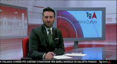 TG TERRITORIO E CULTURA, puntata del 19/01/2019