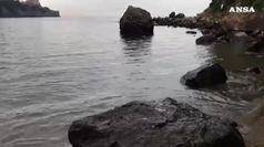 Il mistero dei gamberetti, migliaia a Ischia