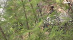 Prorogata missione dei soldati al confine con il Messico