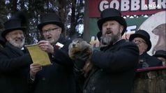 Usa: primavera arrivera' presto, parola della marmotta Phil