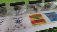 Negozi cannabis:
