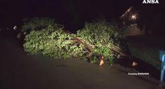 Tornado si abbatte sul Missouri, 3 morti