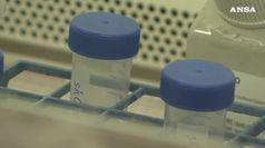 Epatiti e infezioni hiv malattie dimenticate in Europa