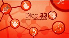 DICA 33, puntata del 05/06/2019