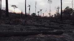 L'Amazzonia va in fumo, nuova lite Bolsonaro-Macron