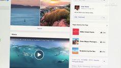 Facebook condannata, risarcire azienda italiana per app