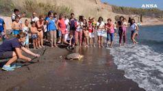 Liberata Aprea, la tartaruga salvata dalla plastica torna in mare