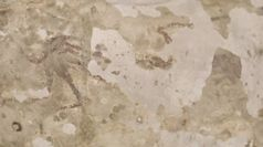 Indonesia, scoperta una grotta di 44.000 anni fa