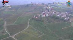 Falso vino Doc in Oltrepo' Pavese, 5 arresti