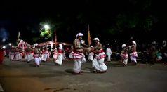 Sri Lanka, elefanti protagonisti del festival buddista