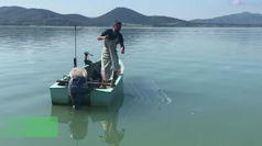 Coronavirus, fatturato dimezzato per pescatori del Trasimeno