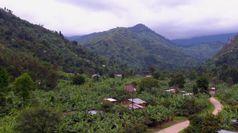Reviving Origins di Nespresso arriva anche in Uganda