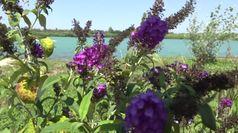 Laghi Nabi, oasi del turismo ecosostenibile contro le ecomafie