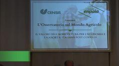 Agricoltura, Enpaia-Censis: