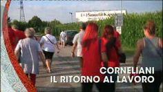 TG CRONACA, puntata del 03/08/2020