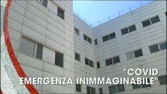 TG CRONACA, puntata del 14/08/2020
