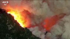 Gravi incendi in California