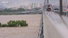 Seul, forti piogge e inondazioni: sei morti