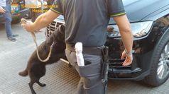 Messina, sequestrati 20 chili di coca nascosti nel doppiofondo di un'auto