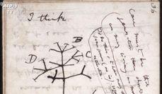 Universita' di Cambridge, l'appello per ritrovare i taccuini di Darwin
