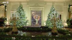 Svelate le decorazioni natalizie alla Casa Bianca: un omaggio al personale medico