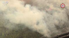 Australia, gli incendi devastano l'isola di Fraser, patrimoni Unesco