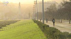 Con Europa green 5 milioni nuovi posti lavoro
