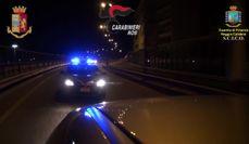'Ndrangheta, maxi operazione contro la cosca Pesce: 53 arresti