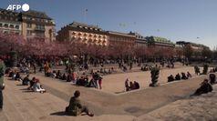 Stoccolma: i residenti ammirano i ciliegi in fiore, ma senza mascherina
